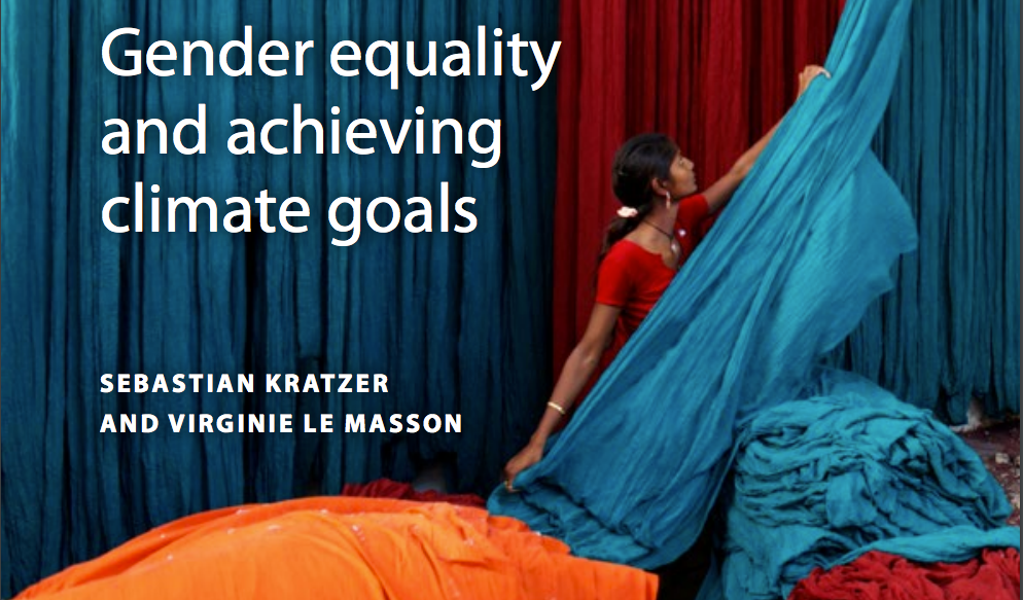 Gender equality and achieving climate goals